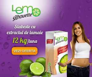 LemoSilhouette